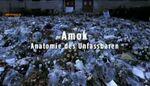Amok - Anatomie des Unfassbaren