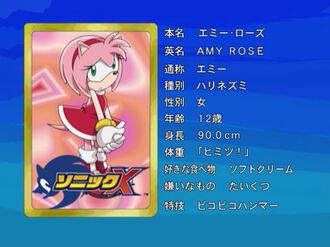 1 Amy Rose Sonic X
