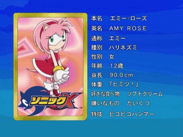 File:1 Amy Rose Sonic X.jpg