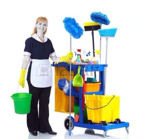 File:Cleaning.jpg
