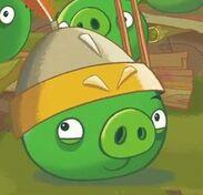 Gaurd pig