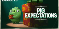 Pig Expectations