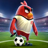 Angrybirdsgoal