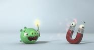 Piggy Tales Zam(6)