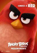 TheAngryBirdsMovieRedBirdSpanishPoster