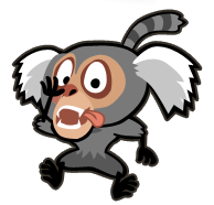 File:Marmoset 2.png