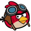 Angry-Birds-Avatar-Red-Bird-100x100