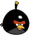 Big Brother Black Bird