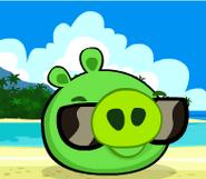 Piggie at the beach