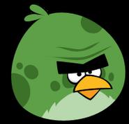 Big green bird