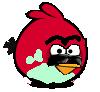 BackupBird