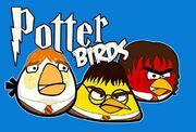 Potter birds