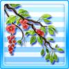 Fiveleaf Tree