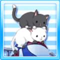 Cat Basket Type2