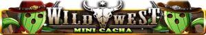 Wild West mini banner