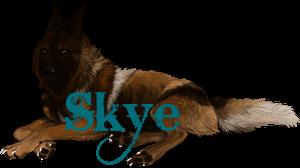 Skyesigniture