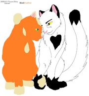 Warrior cat love free lineart by tesseri shira