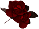 Rose2tsc