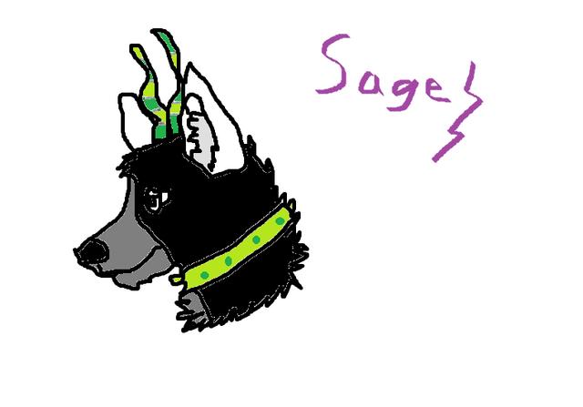 File:Sageheadshot.png