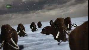File:Woolly mammoth animal armageddon.jpg