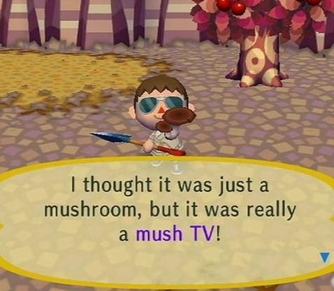 File:MushTV.jpg
