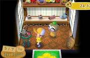 Inside garden shop