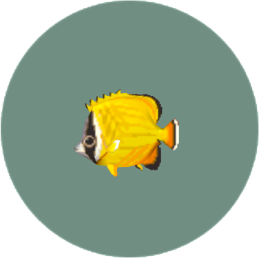 File:Butterflyfish2.png