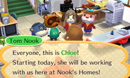 3DS AnimalCrossingHappyHomeDesigner scrn02 E3