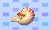 File:Chambered nautilus encyclopedia (New Leaf).png