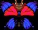 Agrias Butterfly (City Folk texture)