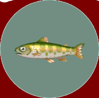 File:Cherry Salmon (City Folk).png