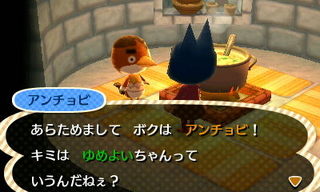 File:Anchovy ACNL Igloo.jpg