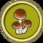 Skinny Mushroom