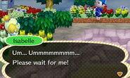 ACNL-Isabelle Wait Up