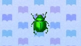 Fruit beetle encyclopedia (New Leaf)