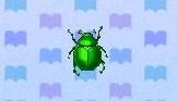 File:Fruit beetle encyclopedia (New Leaf).jpg