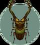 Cyclommatus (City Folk)