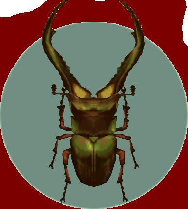 File:Cyclommatus (City Folk).png