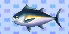 File:Tuna encyclopedia (New Leaf).jpg