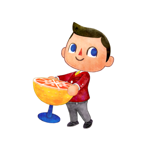 File:N3DS AnimalCrossingHappyHomeDesigner char 03.png