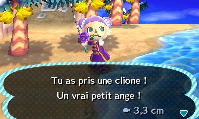 Clione | Animal Crossing Wiki | FANDOM powered by Wikia