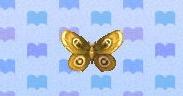 Moth encyclopedia (New Leaf)