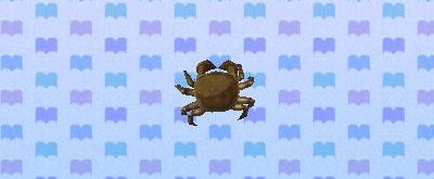 File:Mitten crab.png