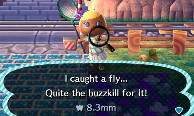 File:Fly catch.jpeg