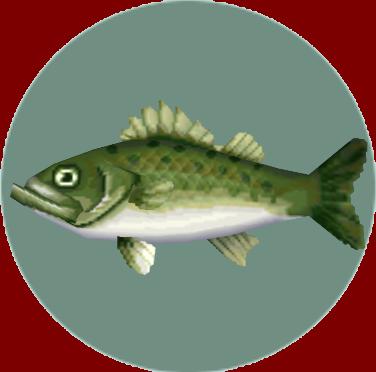 File:Sea Bass (City Folk).png
