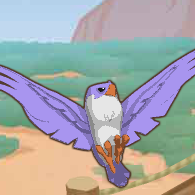 Falconplay.png