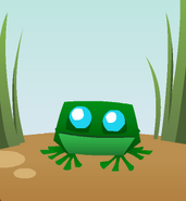 Pet frog