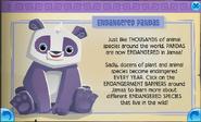Endangered panda jamaa journal