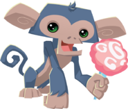 Monkey holding cotton candy