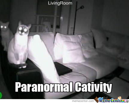 File:Spooky-Kitty large.png
